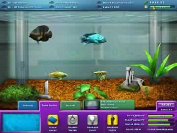 FishCo - Screen 1