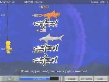 Typer shark adventures