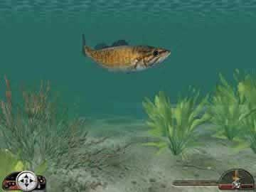 In-Fisherman Freshwater Trophies - Screen 1